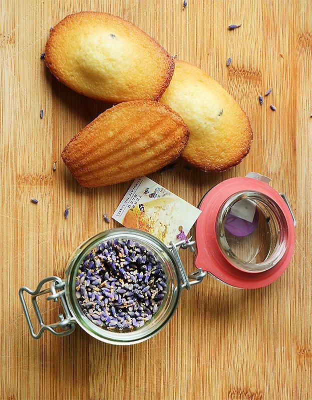french-pastry-madeleine-lavender-terre-bleu-flavor